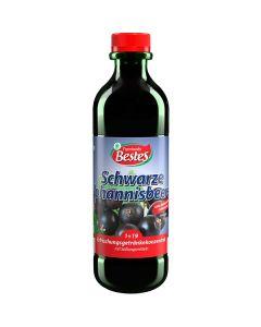 Getränkekonzentrat 1+19 schwarze Johannisbeere, -A
